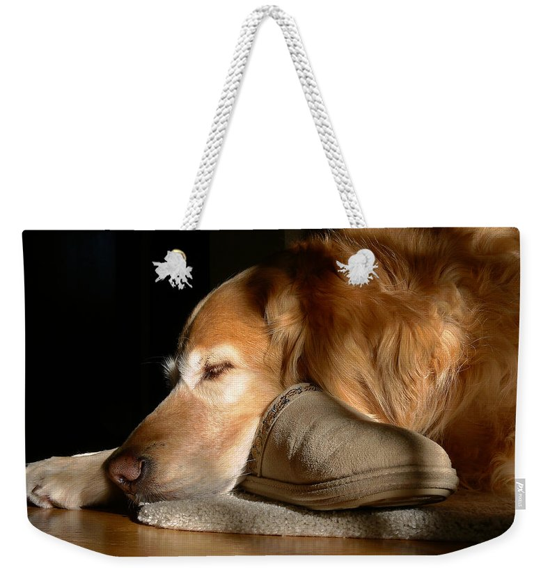 Golden Retriever Weekender Tote Bag featuring the photograph Golden Retriever Dog With Master's Slipper by Jennie Marie Schell