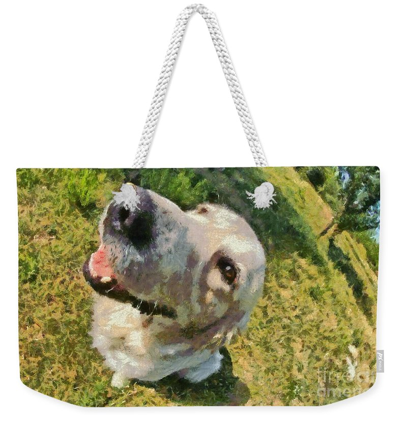 Dog; Golden Retriever; Animal; Sit; Sitting; Rest; Resting; Portrait; Face; Greece; Dogs; Hellas; Greek; Hellenic; Male; White; Paint; Painting; Paintings; Fish-eye; Fisheye Weekender Tote Bag featuring the painting Golden Retriever Portrait by George Atsametakis