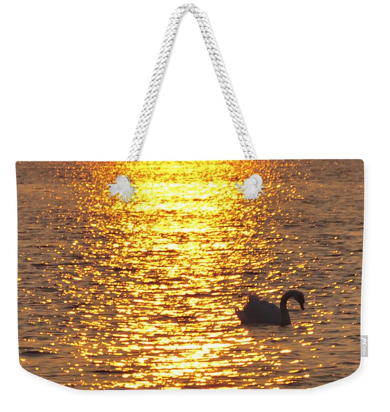 Swan Weekender Tote Bag featuring the photograph Golden Swan by Terry DeLuco