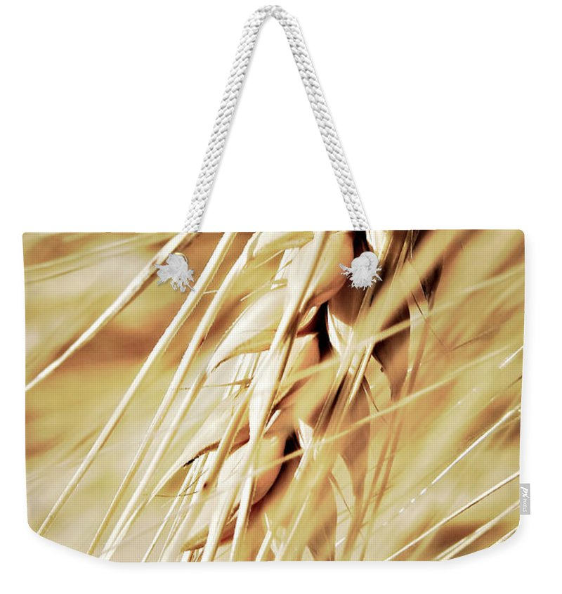 Agricultural Weekender Tote Bag featuring the photograph Golden Wheat Field by Dan Radi
