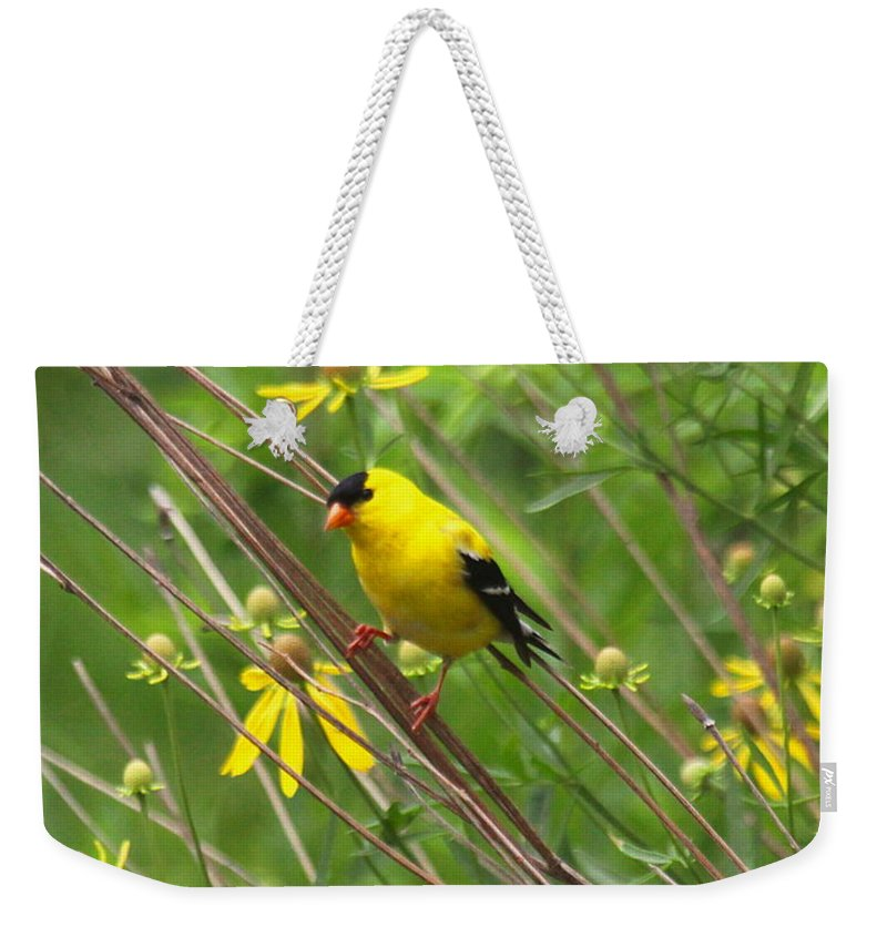 Goldfinch Weekender Tote Bag featuring the photograph Goldfinch In The Flowers by Myrna Bradshaw