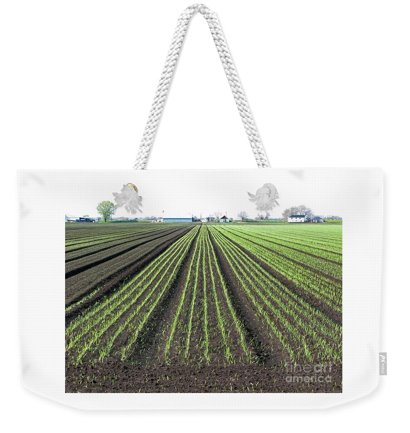 Farm Weekender Tote Bag featuring the photograph Good Earth by Ann Horn
