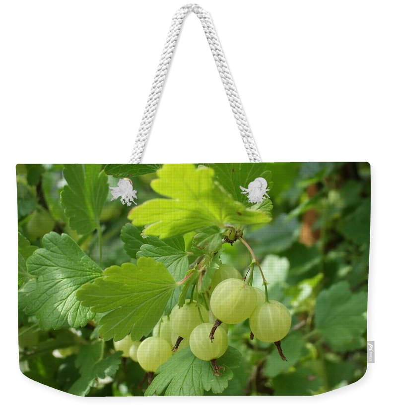 Weekender Tote Bag featuring the photograph Gooseberries by Katerina Naumenko