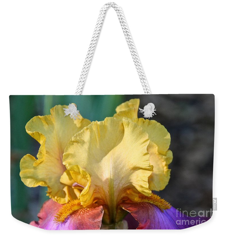 Flower Weekender Tote Bag featuring the photograph Grand Circus by Susan Herber