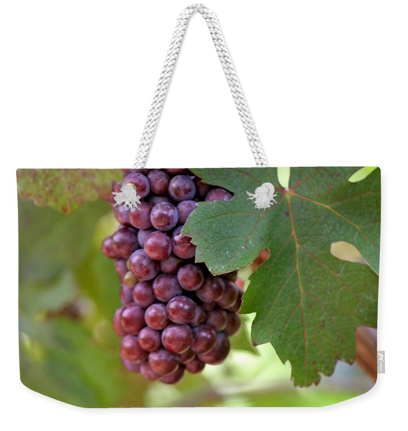 Grape Weekender Tote Bag featuring the photograph Grape Bunch by Art Block Collections