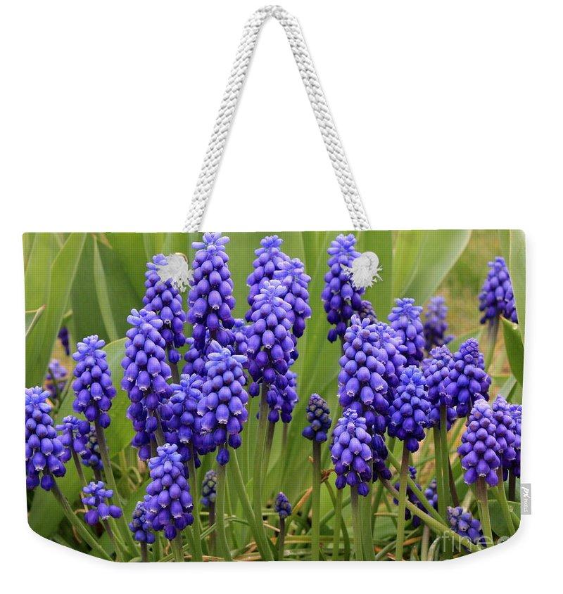 Grape Hyacinth Weekender Tote Bag featuring the photograph Grape Hyacinth by Carol Groenen