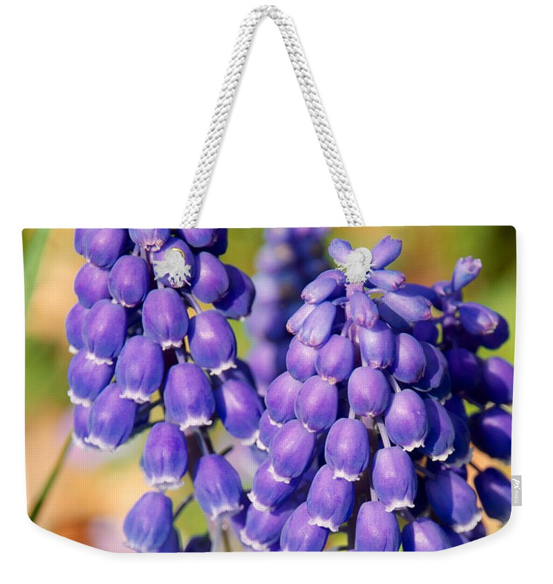 Flowers Weekender Tote Bag featuring the photograph Grape Hyacinth by Mark Dodd