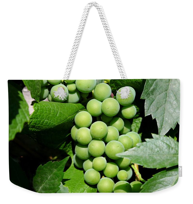 Grapes Weekender Tote Bag featuring the photograph Grapes On The Vine by Carol Groenen