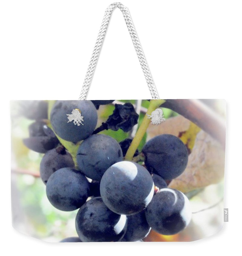 Grapes Weekender Tote Bag featuring the photograph Grapes On The Vine by Kathleen Struckle