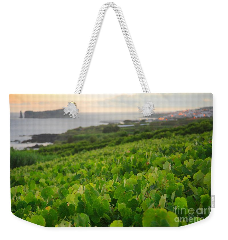 Grapevines Weekender Tote Bag featuring the photograph Grapevines And Islet by Gaspar Avila