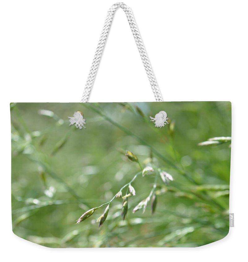 Grass Weekender Tote Bag featuring the photograph Grass Blade by Wayne Schmitt