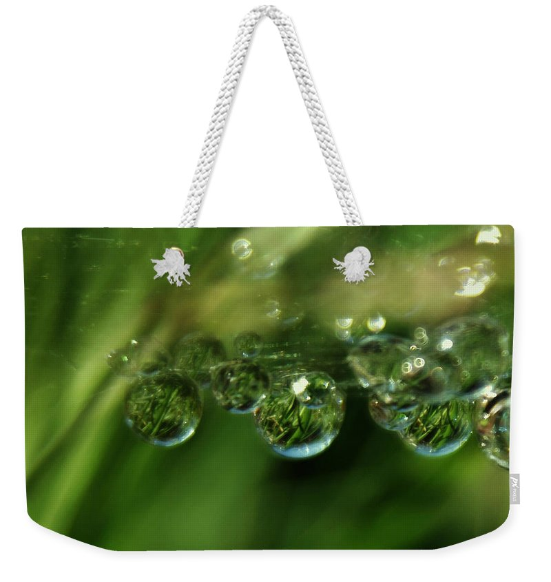 Bright Weekender Tote Bag featuring the photograph Grass Morning Dew by Alex Grichenko
