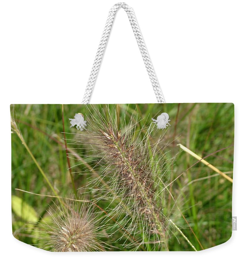 Grass Weekender Tote Bag featuring the photograph Grasses At Spaulding Pond by Geoffrey McLean