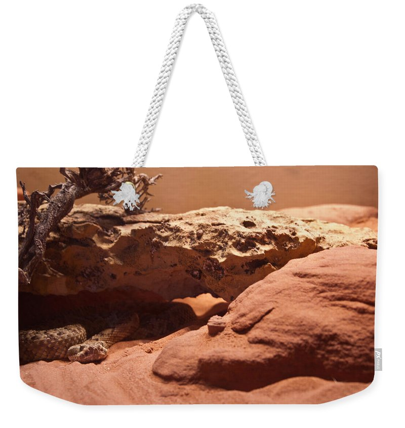 Reptile Weekender Tote Bag featuring the photograph Great Basin Rattlesnake by Douglas Barnett