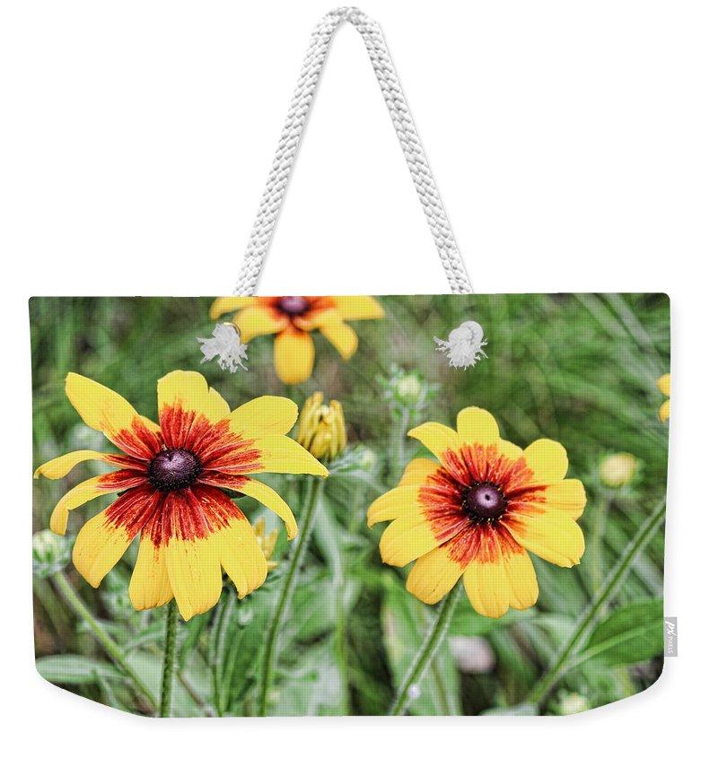 Great Blanket Flowert Weekender Tote Bag featuring the photograph Great Blanket Flower Gaillardia by Cathy Anderson