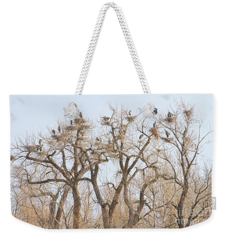 Animals Weekender Tote Bag featuring the photograph Great Blue Heron Colony by James BO Insogna