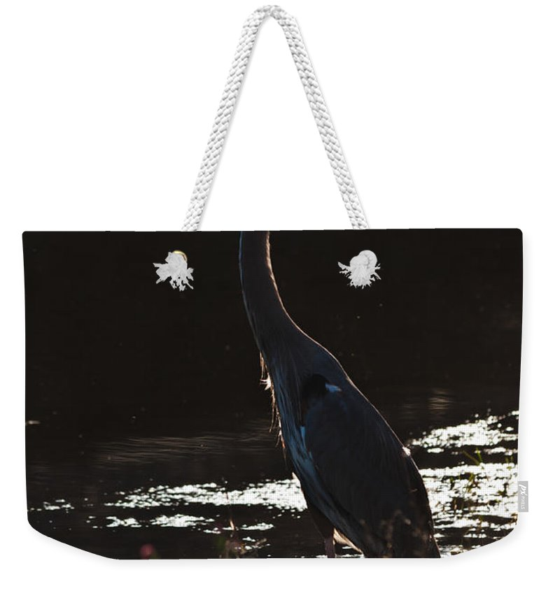 Ardea Herodias Weekender Tote Bag featuring the photograph Great Blue Heron by Ed Gleichman
