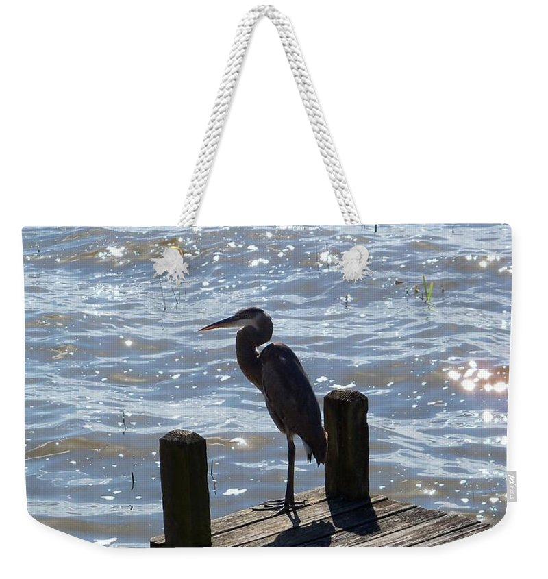 Great Blue Heron Weekender Tote Bag featuring the photograph Great Blue Heron by Katie Beougher