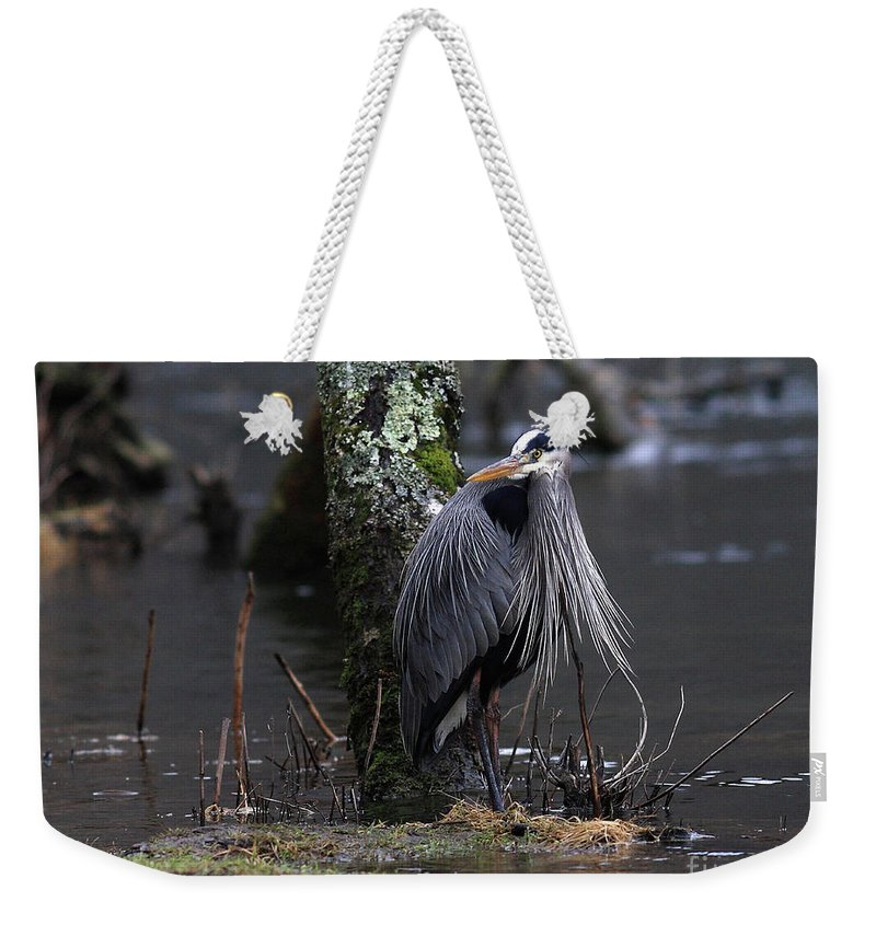 Heron Weekender Tote Bag featuring the photograph Great Blue Heron On The Clinch River by Douglas Stucky