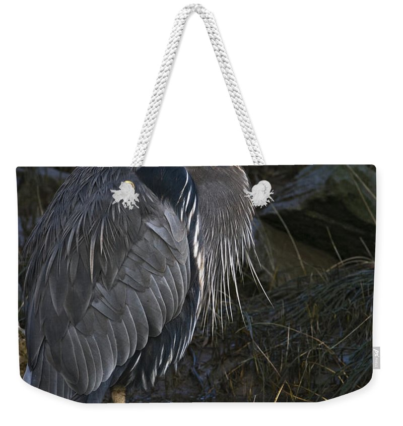 Heron Weekender Tote Bag featuring the photograph Great Blue Heron by Rob Mclean