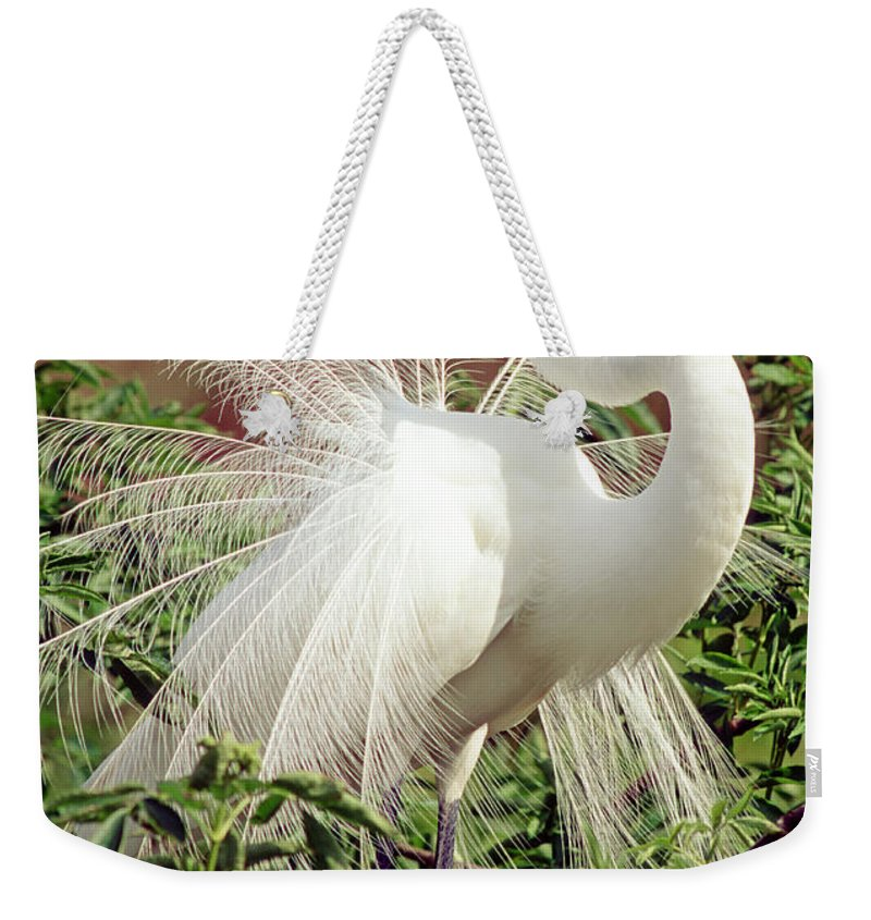 Great Egret Weekender Tote Bag featuring the photograph Great Egret Courtship Display by Millard H. Sharp