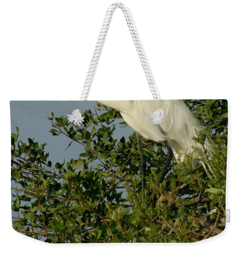 Egret Weekender Tote Bag featuring the photograph Great Egret In A Tree by Larry Allan