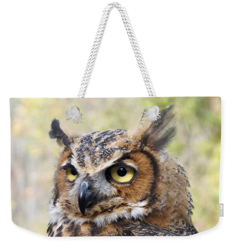 Owl Weekender Tote Bag featuring the photograph Great Horned Owl by Ann Horn