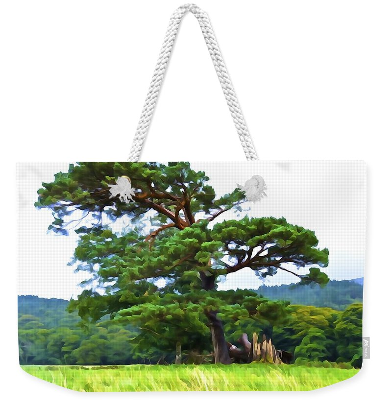 Pine Tree Weekender Tote Bag featuring the photograph Great Pine by Charlie Brock