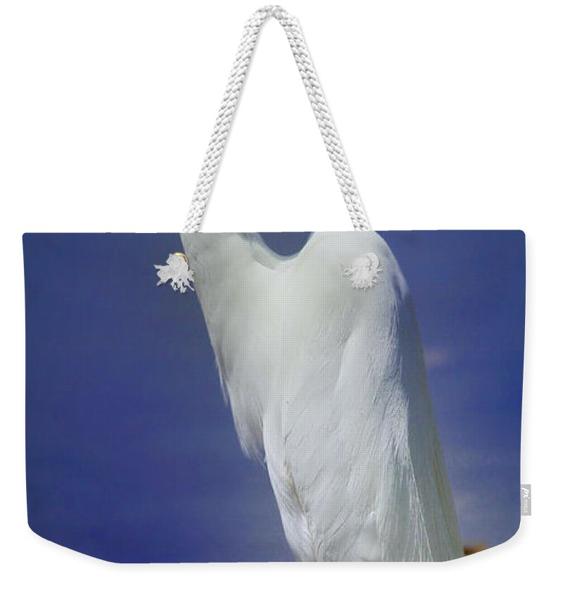 Bird Weekender Tote Bag featuring the photograph Great White Egret 2 by John Absher