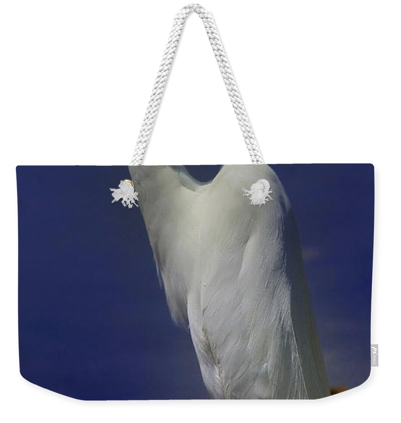 Bird Weekender Tote Bag featuring the photograph Great White Egret by John Absher