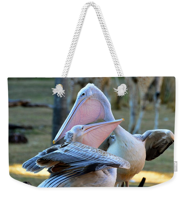 Wildlife Photography Weekender Tote Bag featuring the photograph Great White Pelicans by David Lee Thompson