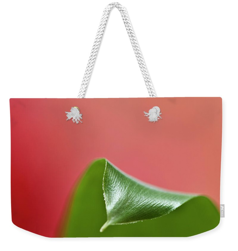 Heiko Weekender Tote Bag featuring the photograph Green And Red by Heiko Koehrer-Wagner