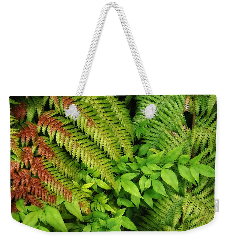 Foliage Weekender Tote Bag featuring the photograph Green Day by Donna Blackhall