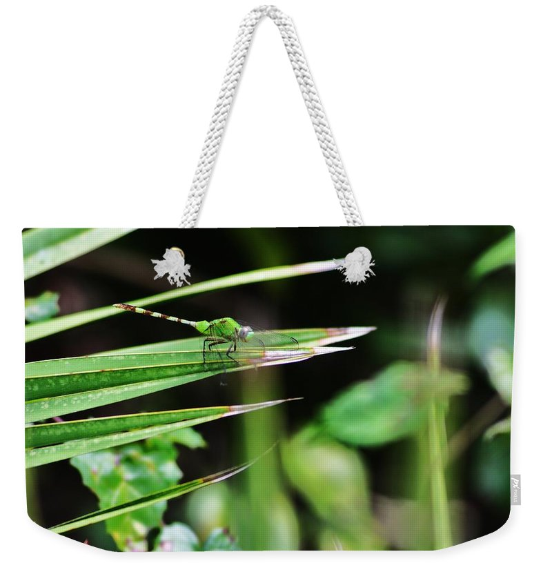 Green Weekender Tote Bag featuring the photograph Green Dragon by Chuck Hicks