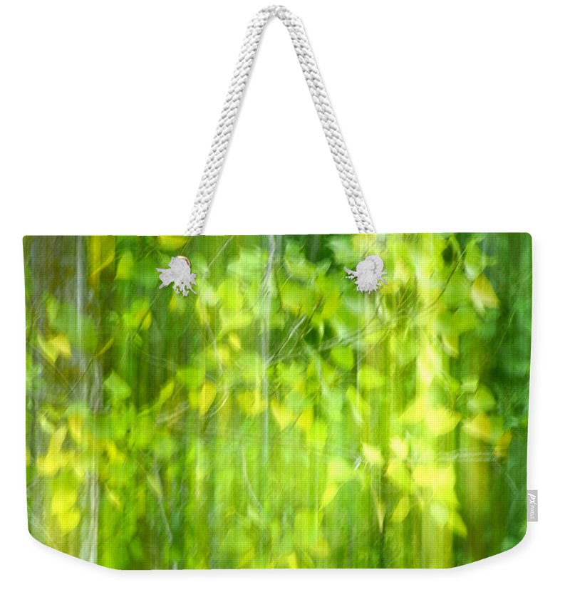 Landscape Weekender Tote Bag featuring the photograph Green Forest by Guido Montanes Castillo