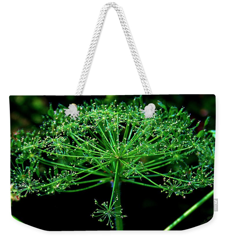 Flower Weekender Tote Bag featuring the photograph Green Frills II by Jeanette C Landstrom