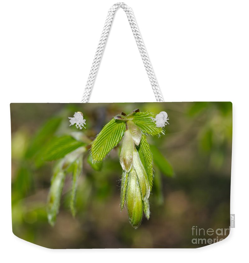 Blade Weekender Tote Bag featuring the photograph Green Leaves by Mats Silvan