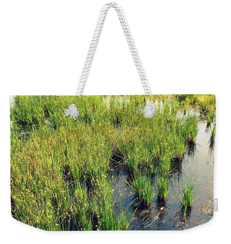 Agriculture Weekender Tote Bag featuring the photograph Green Natural Beauty by Yajhyara Maria
