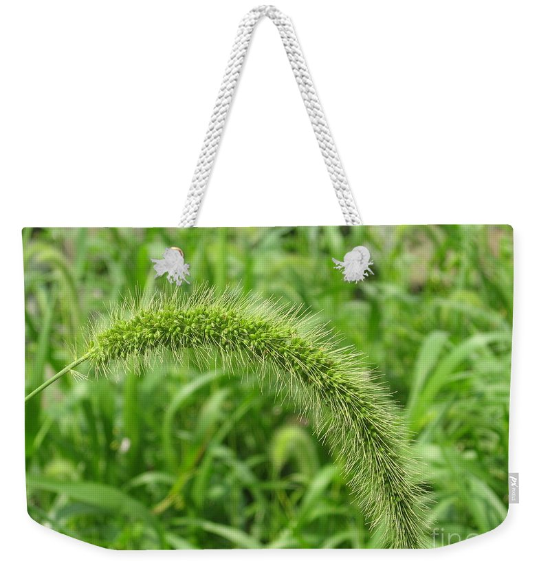 Green Weekender Tote Bag featuring the photograph Green On Green by Ray Konopaske