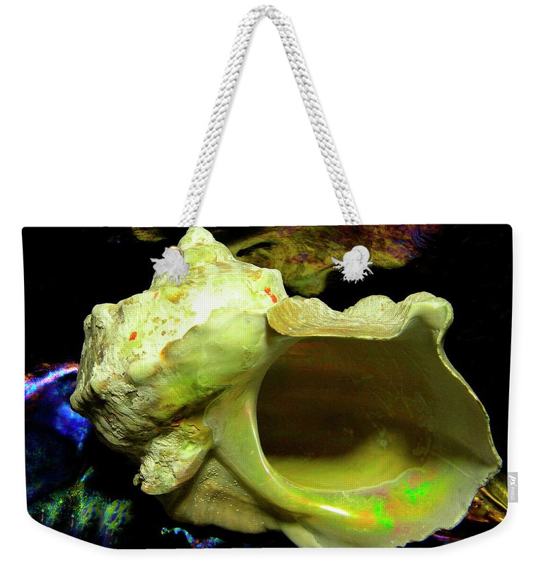 Frank Wilson Weekender Tote Bag featuring the photograph Green Turban Seashell by Frank Wilson