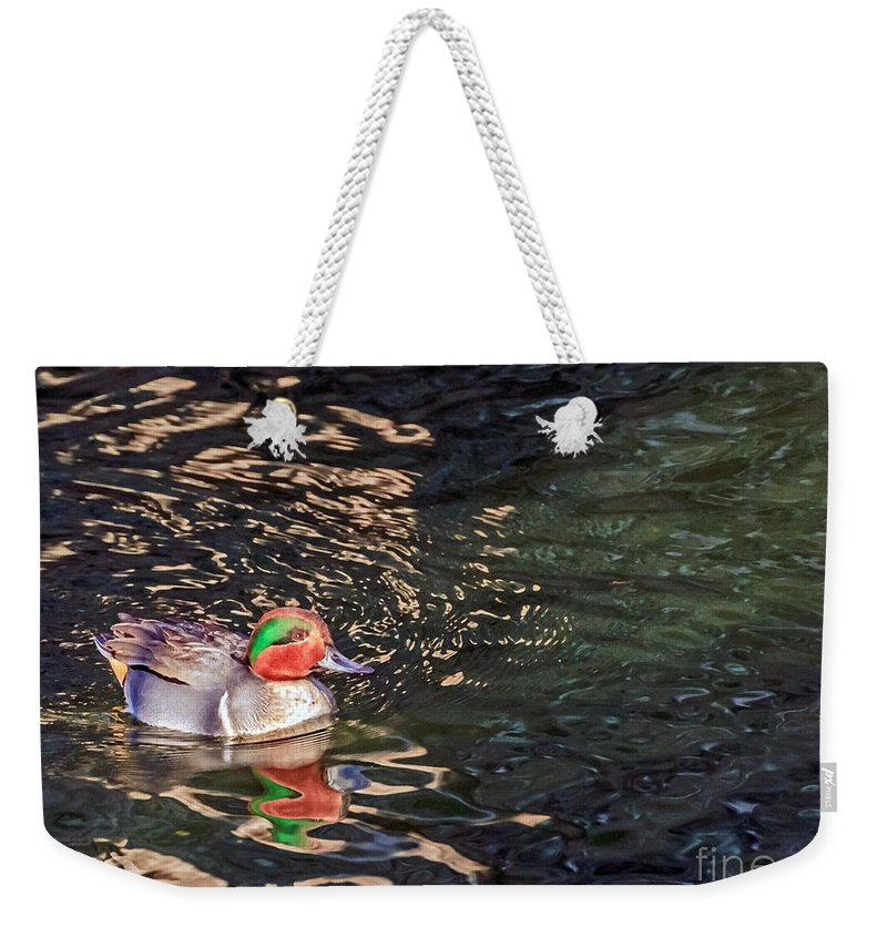 Anas Crecca Weekender Tote Bag featuring the photograph Green-winged Teal by Kate Brown