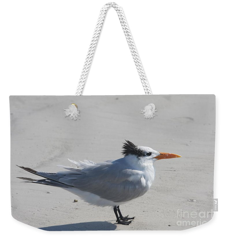Tern Weekender Tote Bag featuring the photograph Tern by Christiane Schulze Art And Photography