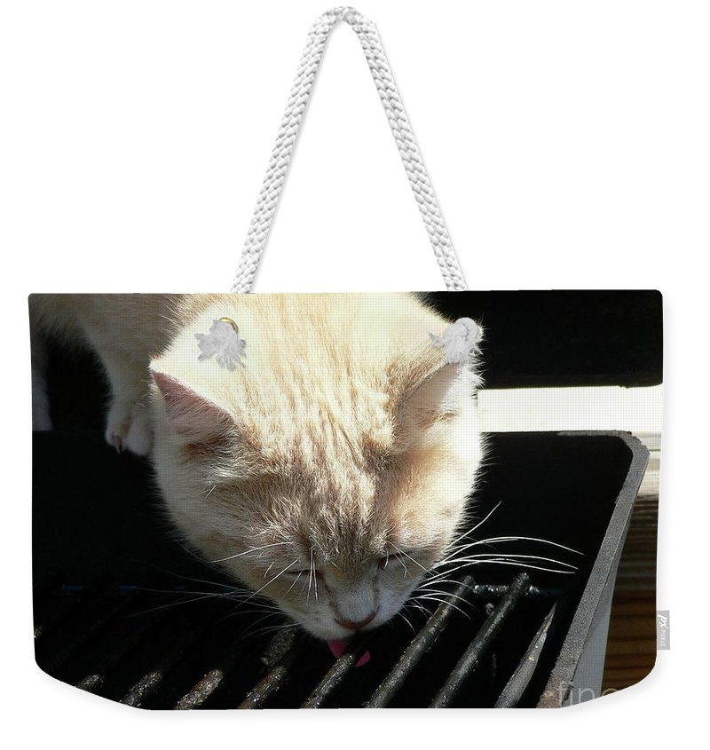 Pet Weekender Tote Bag featuring the photograph Grill Grate Gato by Al Powell Photography USA