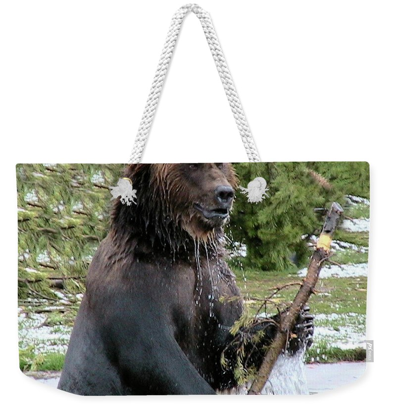Grizzly Weekender Tote Bag featuring the photograph Grizzly Bear 6 by Thomas Woolworth