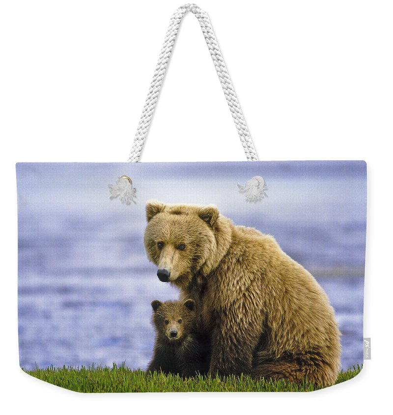 Alakan Brown Bear With Cub Weekender Tote Bag featuring the photograph Grizzly Bear And Cub by Boyd Norton