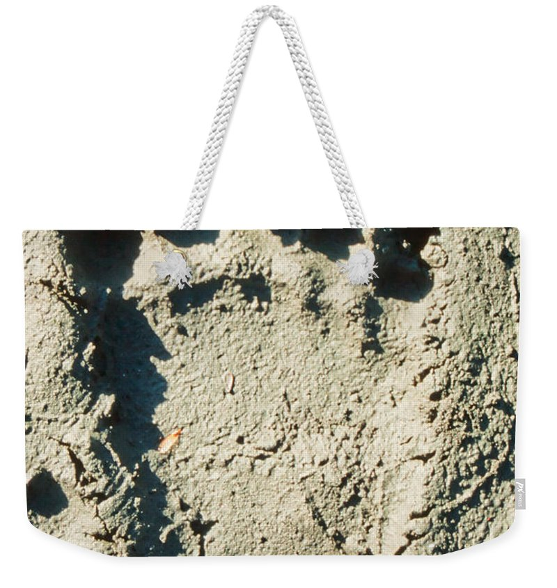 Animal Weekender Tote Bag featuring the photograph Grizzly Bear Track In Soft Mud. by Stephan Pietzko