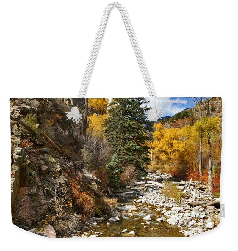 Grizzly Creek Weekender Tote Bag featuring the photograph Grizzly Creek Cottonwoods Vertical by Jeremy Rhoades