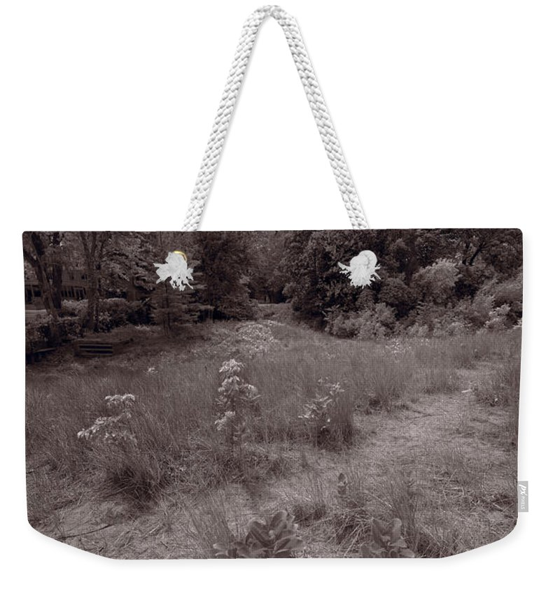 Gross Weekender Tote Bag featuring the photograph Gross Point Beach Grasses Bw by Steve Gadomski