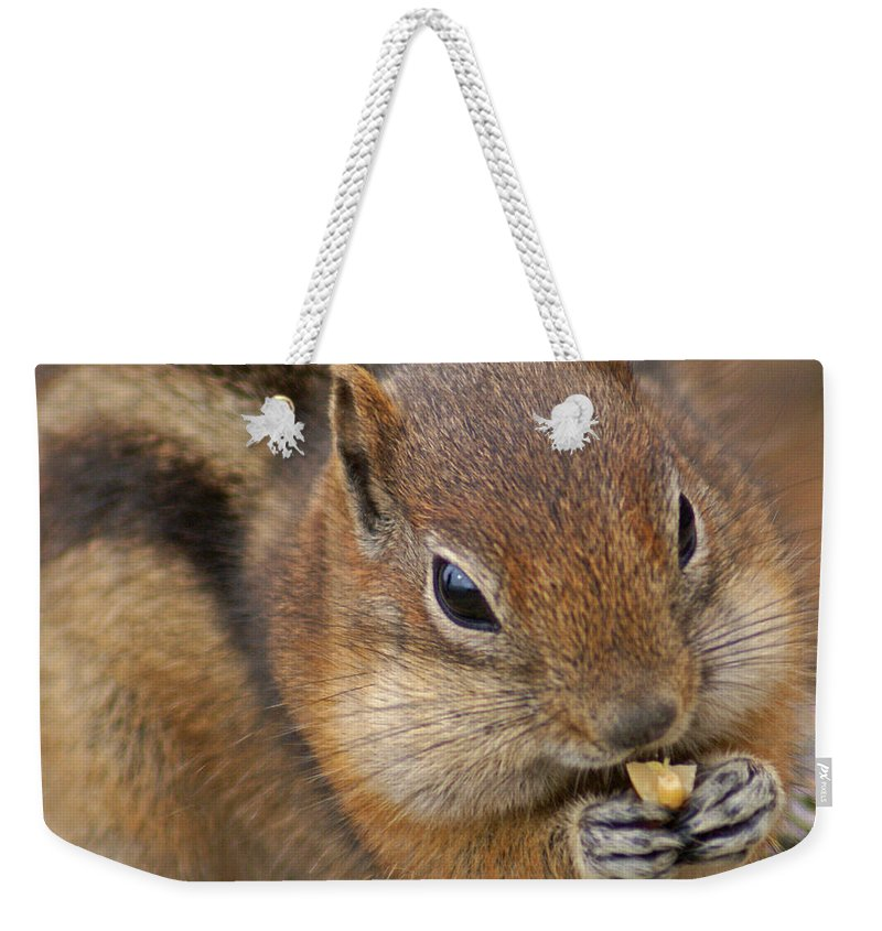 Ground Squirrel Weekender Tote Bag featuring the photograph Ground Squirrel by Heather Coen