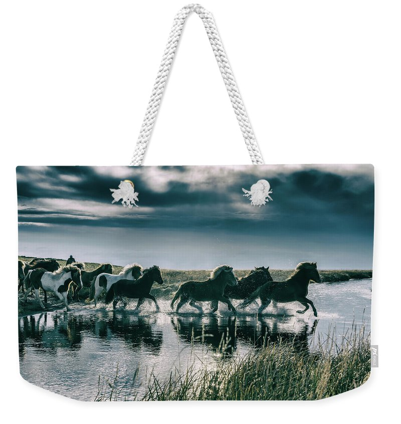 Horse Weekender Tote Bag featuring the photograph Group Of Horses Crossing A River by Arctic-images